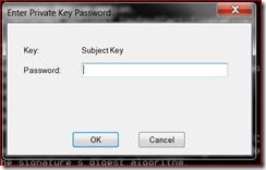 EnterPvkPassword