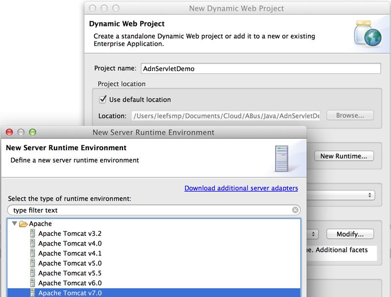 Server runtime environment