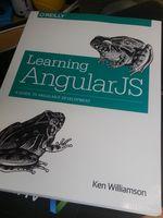 Angular_js_book