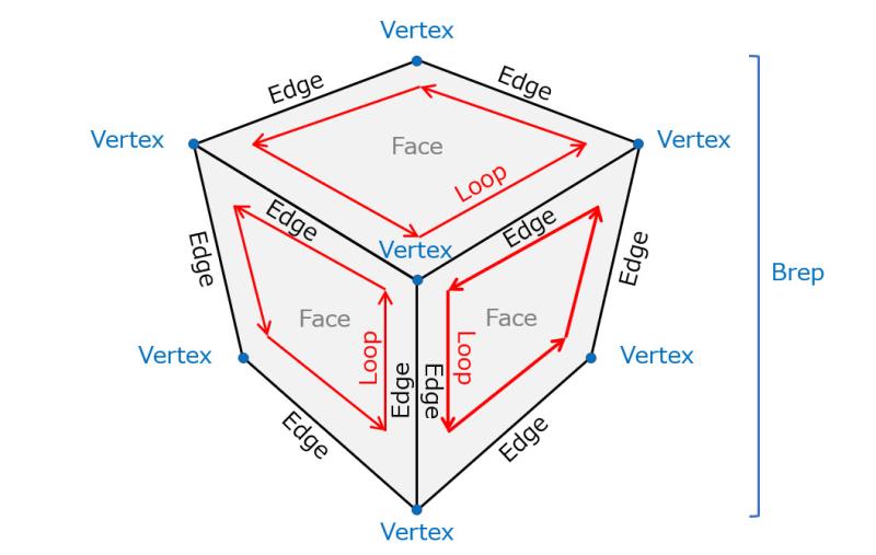 Brep_topology